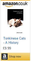 Tonkinese Cats - A History